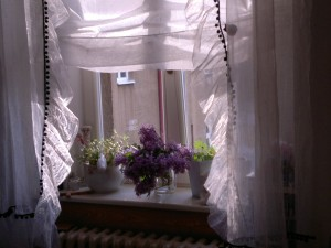 Římská roleta a krešovaná záclona s ozdobou